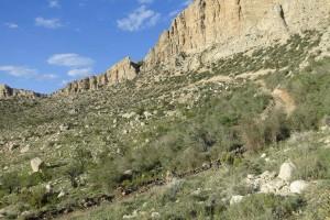 معدن سنگ کوه تودج