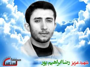 رضا ابراهیم پور