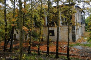 بنایی با معماری پهلوی - استهبان