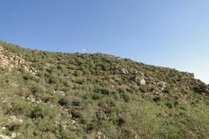 ۳معدن سنگ کوه تودج